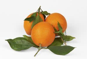 Goodness, fruit of the spirit, orange