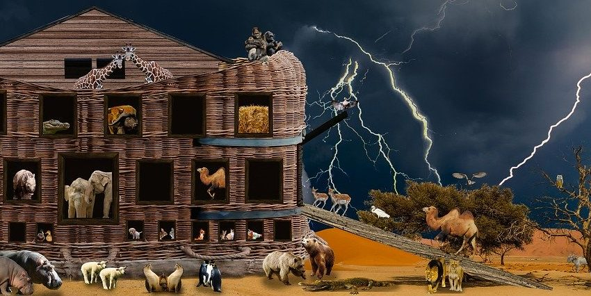 Corona Quarantine – Lessons From Noah's Ark